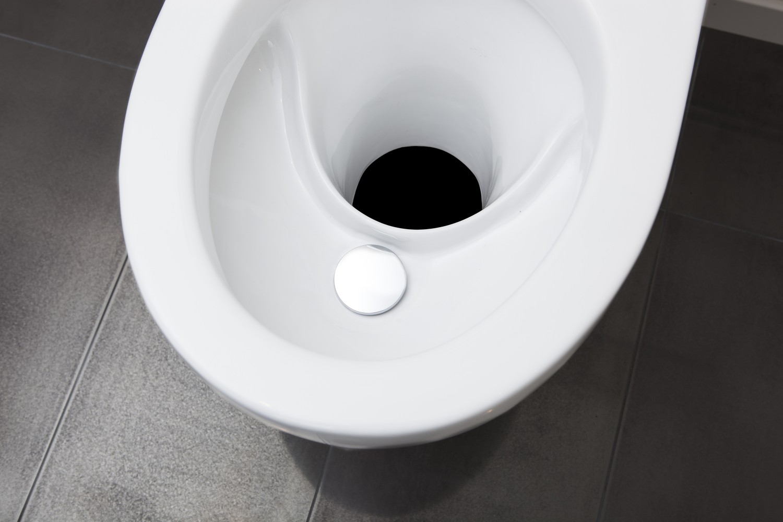 Wostman EcoDry separating porcelain pedestal