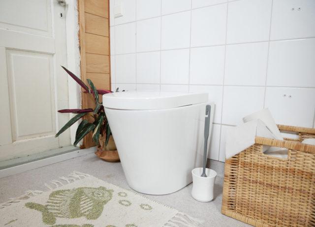 Green Toilet Lux sisälle